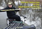 Kopfrute Tubertini C8 Yellow Carp 13m 890Gramm